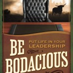 be bodacious put life in your leadership book review