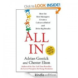 all in by adrian gostick and chester elton