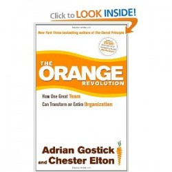 the orange revolution book review gostick elton