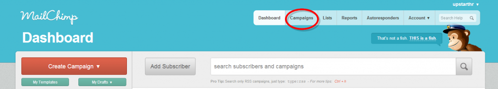 Dashboard   MailChimp-085043