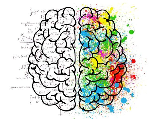 neuroscience learning content
