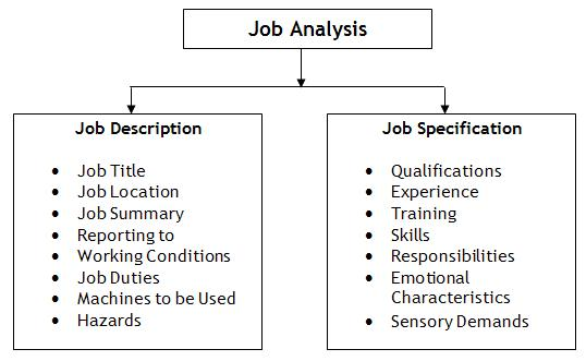 Job-Analysis